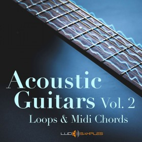 Acoustic Guitars Vol. 2